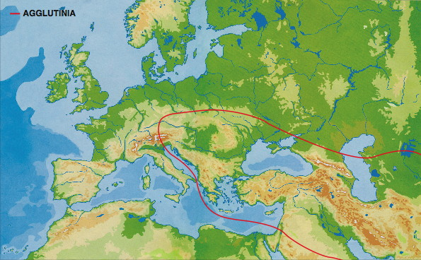 an analysis of carpathian basin in europe Genetic affinities among the historical provinces of romania and central europe as revealed by an mtdna analysis danube basin and carpathian bmc genetics.